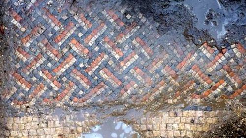The Roman mosaic found by Luke Irwin.