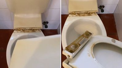 Professional cleaner shares how to deep clean a toilet