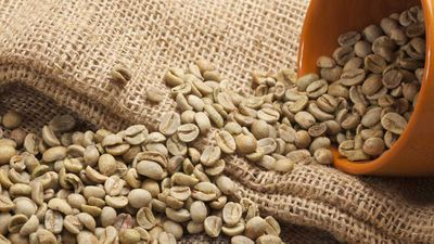 Lightly roasted coffee: Health facts