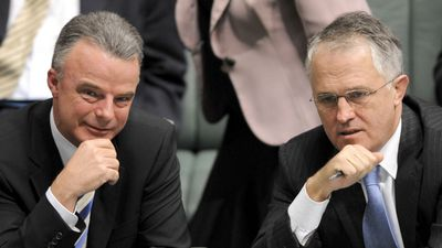 Turnbull won party leadership in September 2008, seizing it from Nelson by four votes after a spill motion.