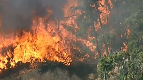 The fire was believed to have started at a camp site.