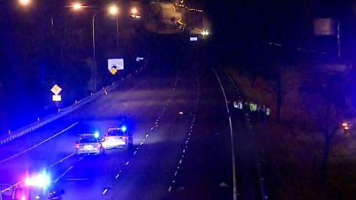 A man has died after hitting a kangaroo on the M4 motorway at Claremont Meadows, east of Penrith. (9NEWS)