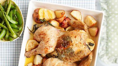 "<a href=""http://kitchen.nine.com.au/2016/05/13/12/37/sage-roasted-chicken"" target=""_top"">Sage roasted chicken</a> recipe"