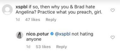 Brad Pitt, girlfriend, Nicole Poturalski, Instagram post, haters, replies to fan