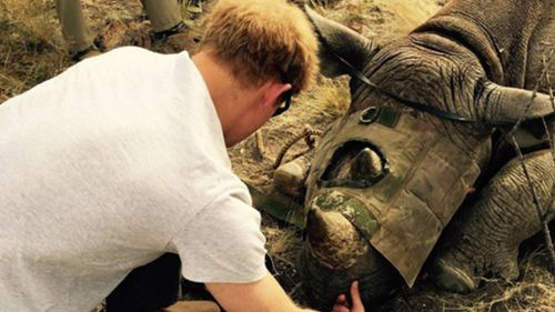 Prince Harry shares inspiring elephant, rhino rescue journey from southern Africa