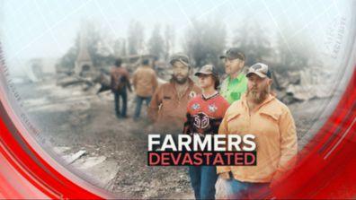 Farmers devastated