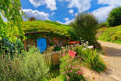 <strong>Lord of the Rings hobbit holes in Matamata, New Zealand</strong>