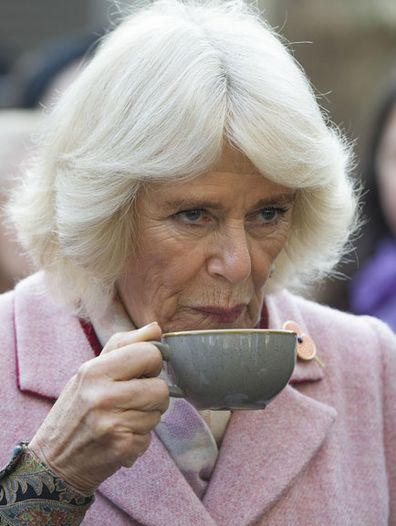 Duchess of Cornwall cancels engagement chest infection 3