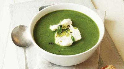 "Recipe: <a href=""http://kitchen.nine.com.au/2016/05/16/12/40/minted-pea-soup"" target=""_top"">Minted pea soup</a><br /> <br />"