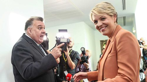 Craig Kelly and Tanya Plibersek in a confrontation in Parliament House.