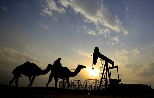 A man rides a camel through the desert oil field and winter camping area of Sakhir, Bahrain.