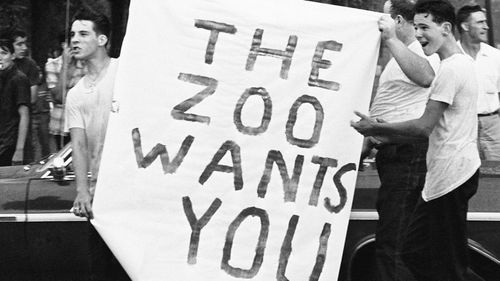 Jeering white youths display this sign, as Dr Martin Luther King Jr and demonstrators marched into all-white neighborhood on far Southwest Side of city in Chicago, August 22, 1966. (AAP)
