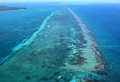 Druga co do wielkości rafa koralowa (Getty Images)
