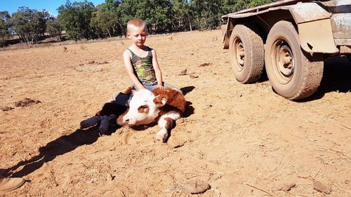 Harry Taylor, pictured on his family's property near Coonabarabran, made a wish for rain for his 6th birthday earlier this month. (Photo: Jess Taylor)