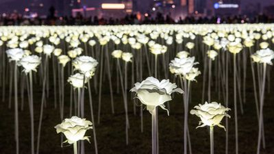 "<p>The city of Hong Kong is playing host to a romantic garden of more than 25,000 rose lights just in time for Valentine's Day.</p><p>The Light Rose Garden, originally from South Korea, is on a world tour.</p><p>The organiser of the stunning installation told the UK Telegraph he wanted ""families, friends and lovers"" to come outside and enjoy the garden at night.</p><p><strong>Click through for more photos of the stunning LED rose garden.</strong></p>"