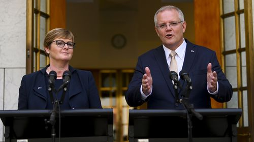 Australia federal politics Christopher Pyne Steven Ciobo retirement Liberal National Party Coalition Scott Morrison Linda Reynolds