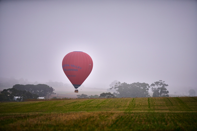 South Australia ballooning in the Barossa Valley