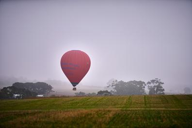South Australia ballooning in the Barossa Valley