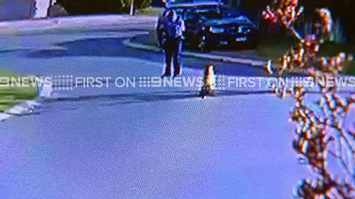 Biggie can be seen walking near the officer. (9NEWS)
