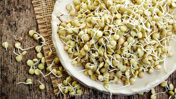 What are sprouted grains? Are sprouted grains healthier than regular grains?
