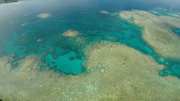 Barrier Reef mass coral bleaching captured on helicopter camera
