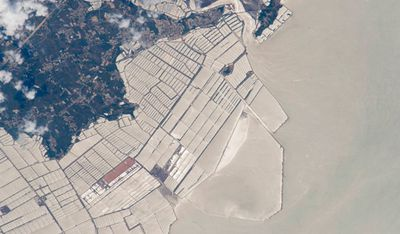 A grid of fish farms extending about 6km off the coast of China's Liaoning province. Image taken September 6.