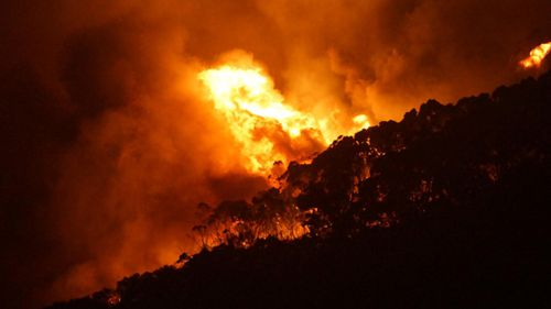 The bushfire razed Wye River and Seperation Creek on Christmas Day.
