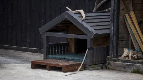 A dog kennel lies vacant at the Hamilton home where a baby was fatally injured in a dog attack.