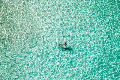 <strong><em>Lone Swimmer</em></strong>