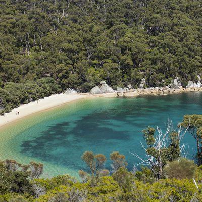 Refuge Cove, Victoria