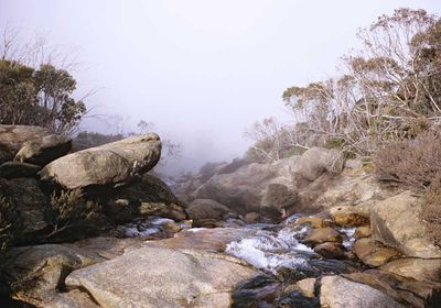 <p>Victoria: Back Wall Walk, 12km, Mount Buffalo National Park</p>