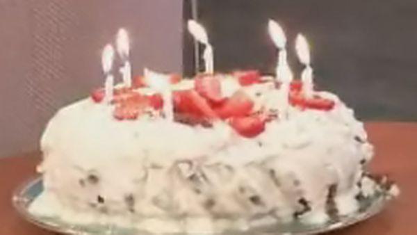 Choc powder cake