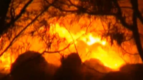 Hot conditions spark total fire ban in New South Wales