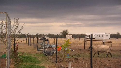 The heavens have opened in parts of regional New South Wales, bringing welcome relief to some drought-stricken communities.