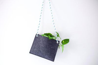 "<strong>Felt Hanger, $45,&nbsp;<a href=""https://urbanedenco.com/collections/all/products/felt-hanger"" target=""_blank"">Urban Eden</a></strong>"