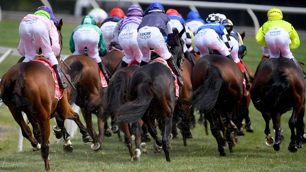 Melbourne Cup field.
