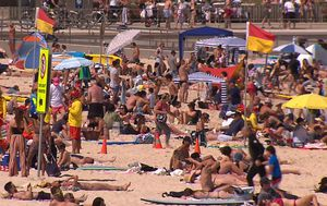 Sydney beaches open this summer with $1.2 million in new COVID-safe measures
