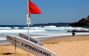 Police indefinitely suspend search for surfer feared missing off Newcastle Beach