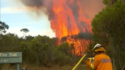 A blaze has burnt over 236 hectares of land at the Royal National Park in Bundeena. (9NEWS)