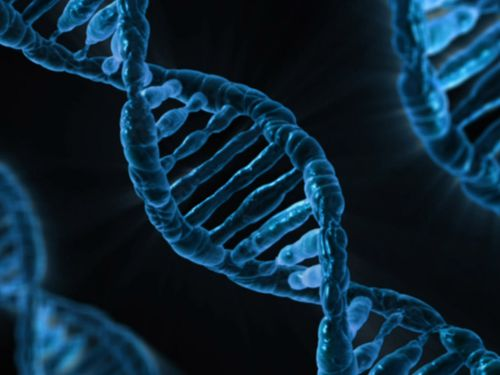 Crossbench MPs unsettled by Victorian DNA laws