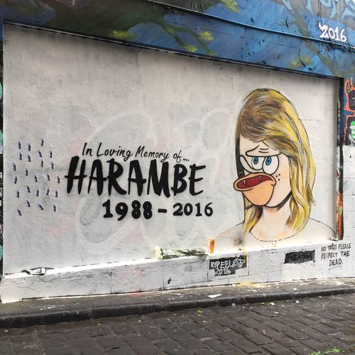 Street artist Lushsux paid tribute to the late Harambe in a Melbourne mural.