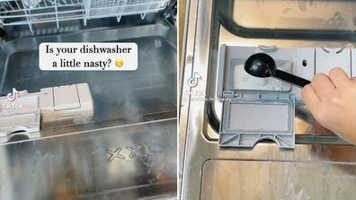 How to get your dishwasher sparkling TikTok hack
