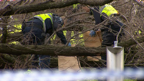 Victoria Police officers collecting evidence. (