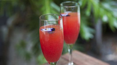 "Recipe: <a href=""http://kitchen.nine.com.au/2018/02/26/15/50/mardi-gras-cocktail-recipe"" target=""_top"">Absolut sparkle </a>"