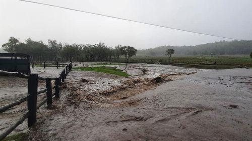 Rain at Green Valley Farm Tingha, NSW.