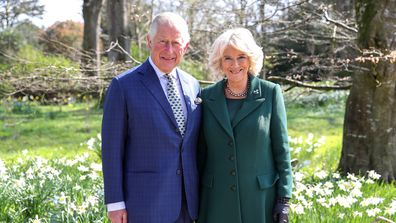 Charles and Camilla release special pic for milestone occasion