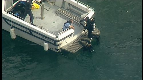 Divers are searching for the plane which is believed to be submerged.