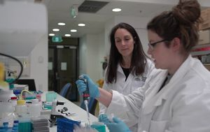 Groundbreaking medical research gets $24 million funding boost from Canberra philanthropist