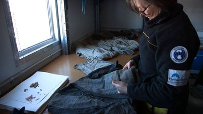 Michelle Berry examines clothing believed to have belonged to Belgrave Ninnis, who died on the expedition after falling into a crevasse.