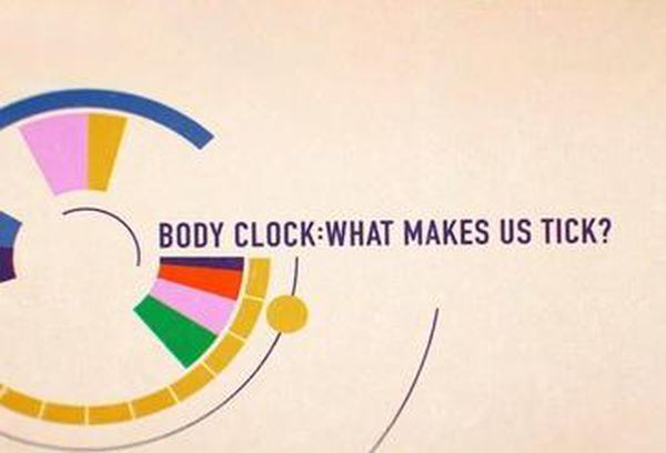 Body Clock - What Makes Us Tick?